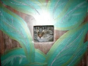 Cat Kennel in Cedar Rapids, IA